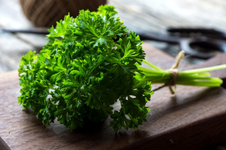 keeping parsley fresh